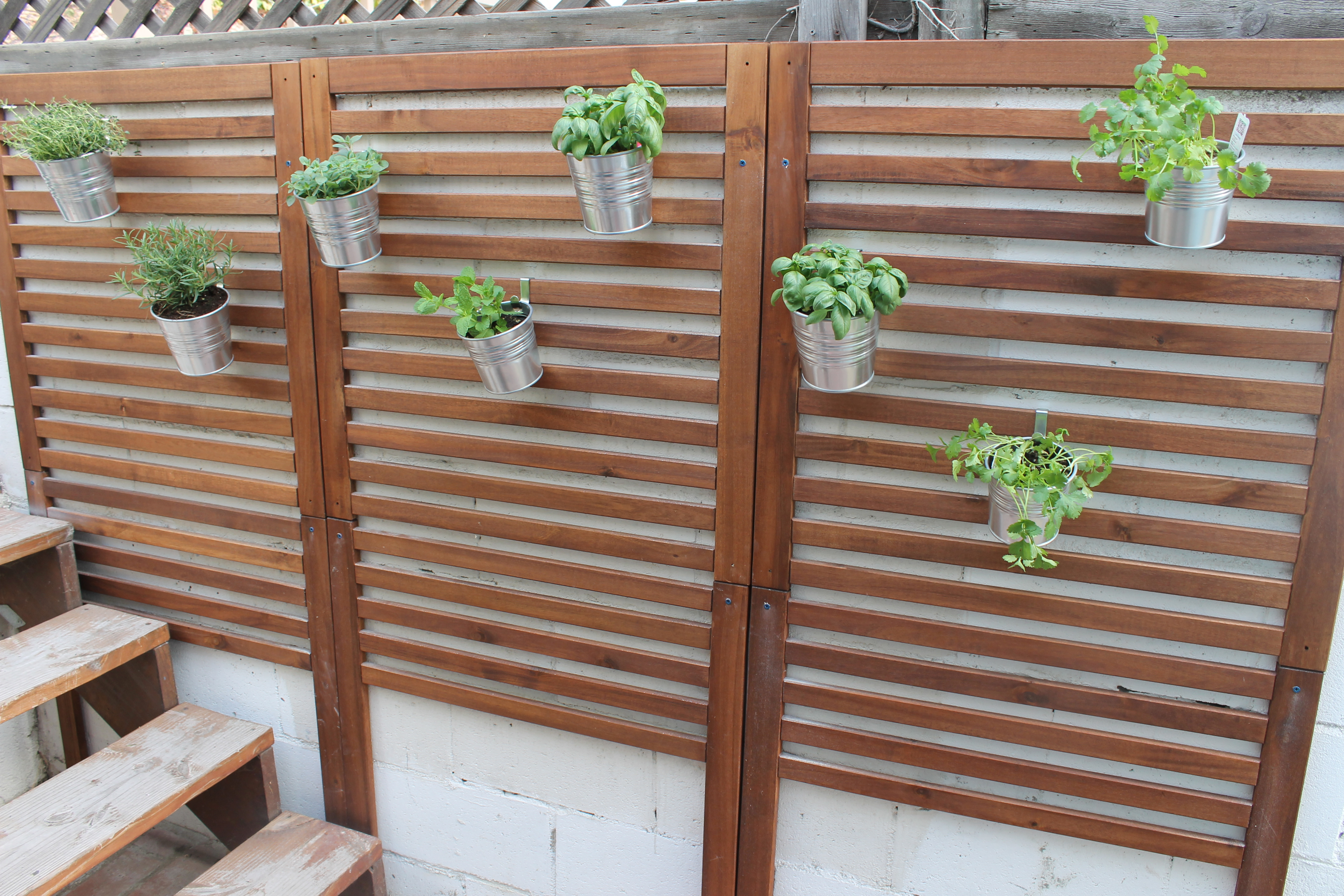 Weekend project patio garden for Wall plants outdoor