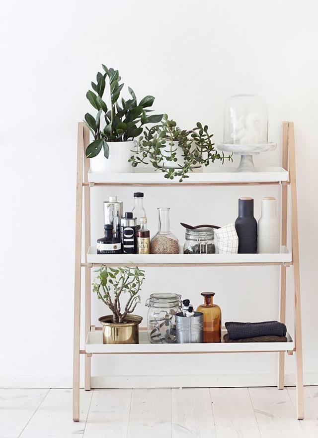 Succulent shelves 2