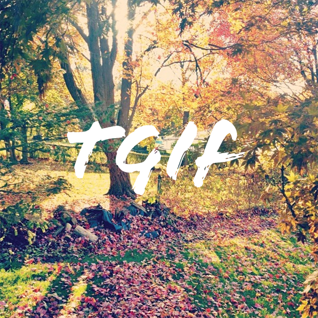 TGIF-FALL
