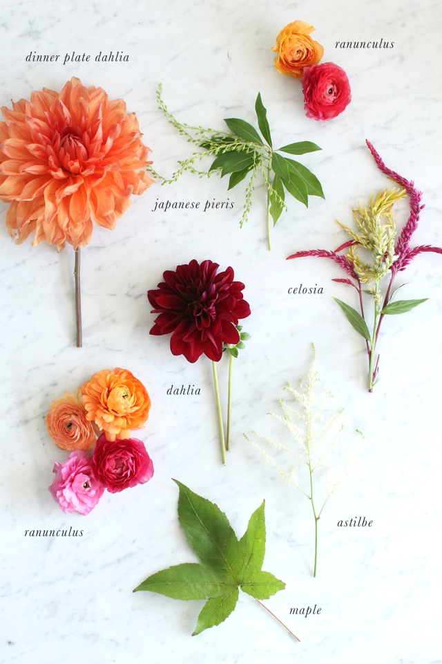 Floral-Guide